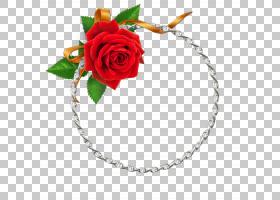 花卉剪贴画背景,发饰,身体首饰,玫瑰秩序,首饰,切花,玫瑰家族,红