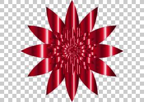 红花,红色,线路,大丽花,花瓣,对称性,花,广告,