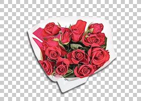 花园玫瑰,植物,玫瑰家族,花束,切花,白色,花,红色,粉红色,花园玫