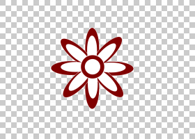 花白,圆,面积,线路,花瓣,红色,白色,花,