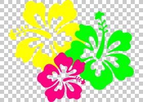 族的图形,花卉设计,植物茎,种子植物,梅洛家族,线路,叶,芙蓉,花瓣