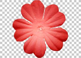 桃花,桃子,洋红色,花,红色,剪贴簿,项链,钻石切割,绘图,面,钻石,图片