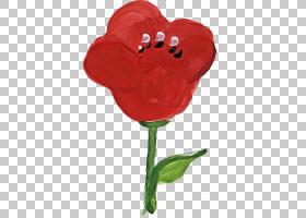 水彩花卉背景,Coquelicot,心,植物茎,花瓣,植物,红色,相框,罂粟,