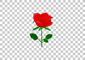 水彩花卉背景,杂交茶玫瑰,floribunda,玫瑰秩序,心,植物茎,叶,花
