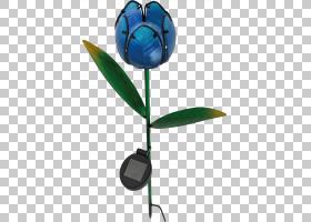 浅蓝色背景,植物,叶,钴蓝,阳台,花,红色,H Vollmer GmbH,花园,发