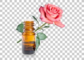 花卉剪贴画背景,液体,玻璃瓶,瓶子,玫瑰秩序,玫瑰,切花,玫瑰家族,