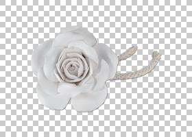 花卉剪贴画背景,首饰,植物,白银,发饰,花瓣,玫瑰秩序,身体首饰,玫