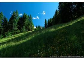 地球,风景,壁纸,(40)