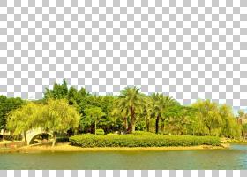 卡通自然背景,草,房地产,土地地段,水资源,水,天空,树,自然,植物,图片