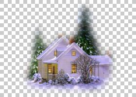 圣诞树雪,财产,回家,小屋,房地产,圣诞装饰,圣诞树,立面,雪,树,针图片