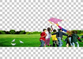夏季海报背景,草,有趣,社区,休闲,播放,能源,娱乐,草坪,夏天,资源