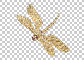 钻石卡通,机翼,昆虫,传粉者,飞蛾与蝴蝶,销,红宝石,地产珠宝,珍珠
