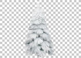 圣诞节和新年背景,黑白,白色,云杉,针叶树,圣诞装饰品,松科,火灾,
