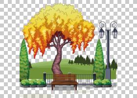 绘图树,木本植物,室内植物,叶,花,植物,卡通,绘图,柳树,树,