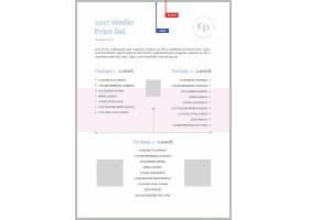 素雅个性时尚简洁企业通用传单模板