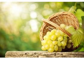 食物,葡萄,水果,壁纸(39)