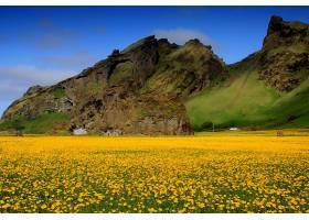 地球,花,花,风景,山,风景优美的,领域,天空,云,壁纸,