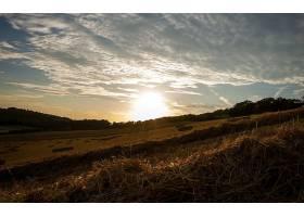 地球,风景,日落,领域,干草堆,自然,壁纸,