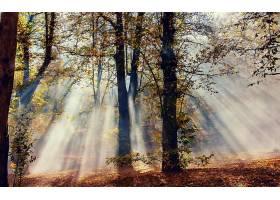 地球,阳光,壁纸,(40)