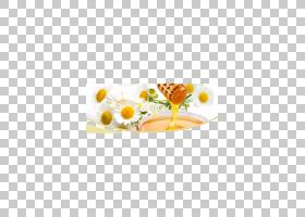 冷冻食品卡通,餐具,玻璃,勺子,拼盘,花,叉子,服务软件,餐具,餐具,