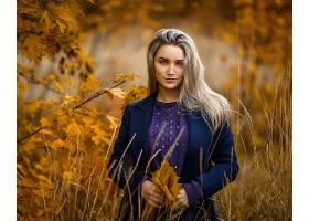 女人,模特,妇女,女孩,白皙的,深度,关于,领域,蓝色,眼睛,秋天,壁图片