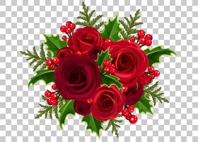 圣诞礼物卡通,花卉,情人节,插花,切花,花卉设计,玫瑰秩序,玫瑰家
