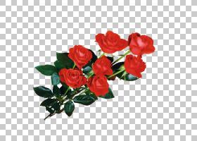 万维网,红色,花卉,花束,粉红色家庭,插花,切花,floribunda,人造花图片
