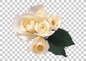 婚礼花卉背景,婚礼仪式用品,花卉,花束,白色,插花,切花,人造花,花