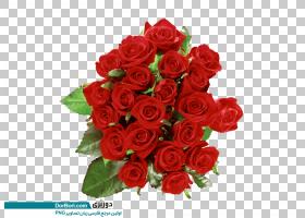 圣诞礼物卡通,花卉,情人节,插花,人造花,花卉设计,玫瑰秩序,玫瑰