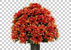 百合花卡通,一年生植物,插花,秘鲁百合,雏菊家庭,花瓣,紫色,亮度,图片