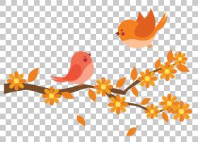 卡通书,机翼,花瓣,分支,植物群,喙,叶,鸟,花,橙色,语音,国语,教育图片
