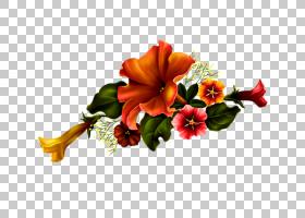 花卉背景,[医]扁桃花,插花,花卉,花瓣,花束,橙色,植物,贺卡,切花,图片