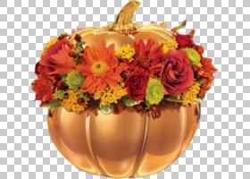 花卉背景,花卉,花束,橙色,切花,花卉设计,插花,花瓶,花盆,花,季节