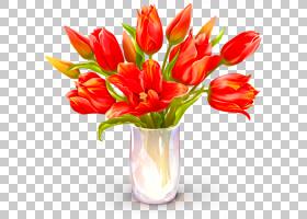 生日快乐蛋糕,花卉,橙色,切花,花卉设计,百合家族,郁金香,花瓶,插