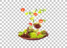 草卡通,草,超级食品,水果,天然食品,花盆,浆果,酱汁,沙拉酱,饭菜,