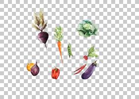 水彩花卉背景,花卉设计,餐具,餐具,花瓣,勺子,叉子,菜肴,半素食主