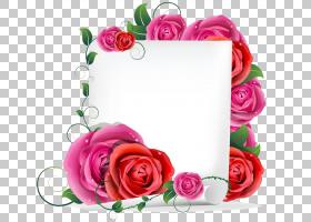 生日快乐蛋糕,婚礼仪式用品,花卉,花束,洋红色,插花,切花,植物群,