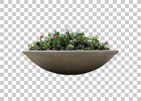花盒,餐具,碗,草药,花瓶,粘土,景观,建筑,植物,架构,花园,花,窗口