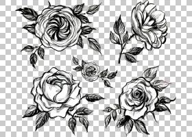 黑白花,绘图,花卉,临时纹身,植物群,黑白,线路,插花,玫瑰家族,植