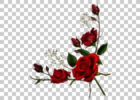 开斋节穆巴拉克设计,植物茎,分支,静物摄影,蔷薇,花束,花卉设计,