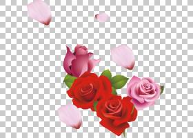 情人节心脏,情人节,花卉,花束,洋红色,插花,花瓣,蔷薇,花卉设计,
