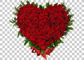 情人节心脏,红色,花卉,粉红色家庭,一年生植物,插花,康乃馨,花卉