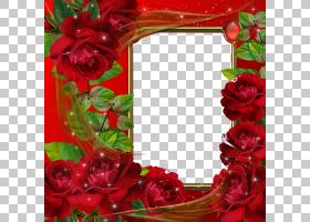 情人节相框,红色,花卉,插花,花瓣,切花,植物群,花卉设计,玫瑰秩序