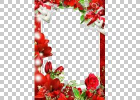 情人节相框,红色,花卉,花束,插花,玫瑰,植物群,装饰,花卉设计,情