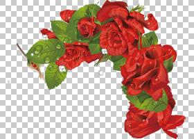 情人节相框,红色,花卉,花束,插花,花卉设计,海棠,花盆,情人节,玫