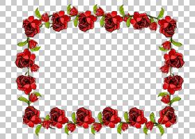情人节相框,花卉,插花,花瓣,切花,人造花,花卉设计,玫瑰秩序,玫瑰