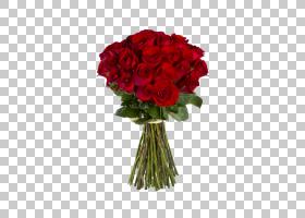 情人节背景,粉红色家庭,一年生植物,插花,切花,floribunda,蔷薇,