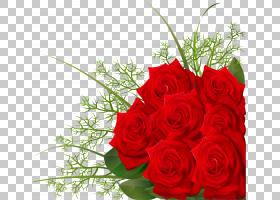 情人节背景,红色,花卉,插花,切花,人造花,情人节,玫瑰秩序,玫瑰家