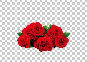 情人节背景,花卉,花束,粉红色家庭,插花,切花,floribunda,人造花,