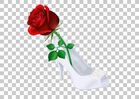 花束画,户外鞋,花束,插花,花盆,花卉,切花,植物,高跟鞋,鞋,玫瑰秩